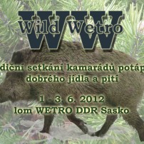 Wild Wetro 2012